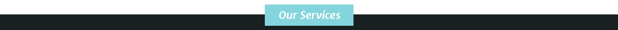 Services-Divider